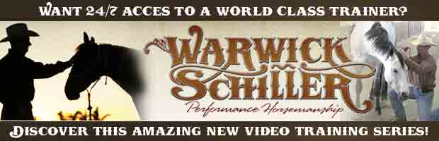 Schiller banner internal rv